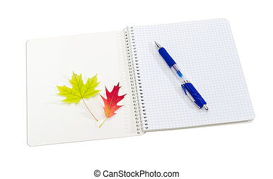 Open exercise books, blue pen and yellow and red leaves -...