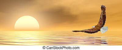 Eagle flying to the sun - 3D render - Eagle flying to the...