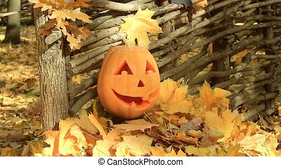 Halloween pumpkin lies on a pile of leaves