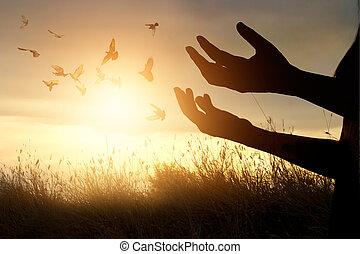 mujer, rezando, y, libre, pájaro, el gozar,...