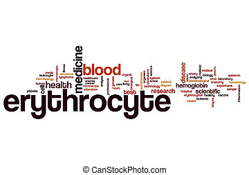 Erythrocyte word cloud concept