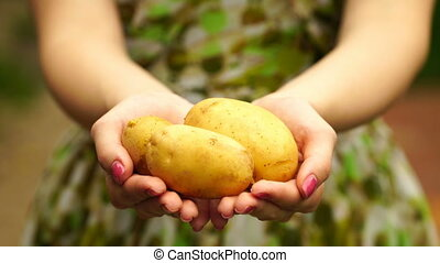 footage Woman holding a young potatoes close up