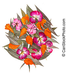 bouquet of geranium and eschscholzia on silver willow leaves...
