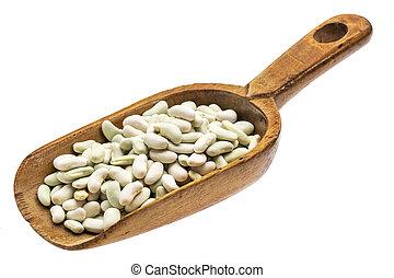 rustic scoop of flageolet beans
