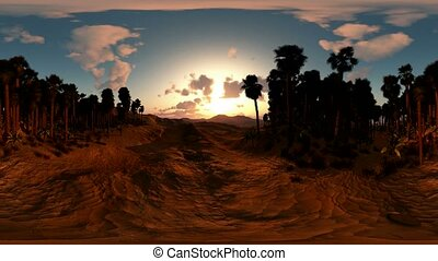panoramic of palms in desert at sunset made with the one 360...