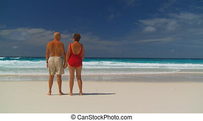senior couple on the beach, backview