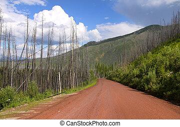 Rural road in Montana