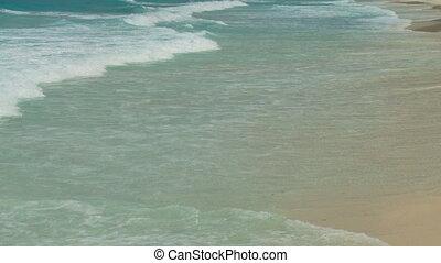 wonderful waves arriving on seaside
