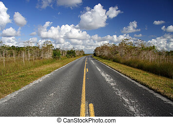 Park Entrance - The main road through Everglades National...