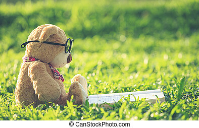 Lovely brown teddy bear wear glasses with book sitting on...