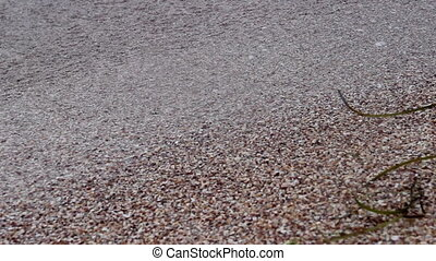 sand at the seabeach - close-up foam of sea waves at the...