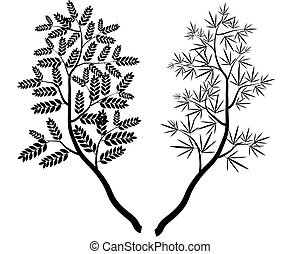 Vector Collection of Tree Branches