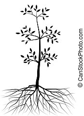 abstract vector tree with leaves and roots