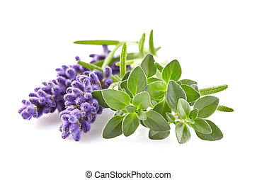 Lavender with thyme spices