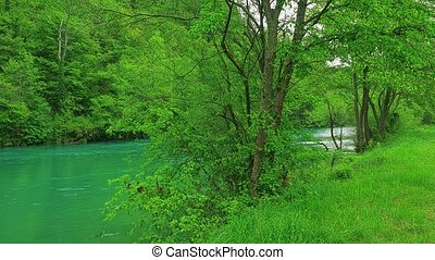 Una river nature - Beautiful nature of the Una river which...