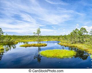 lake landscape near Tallinn