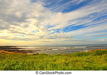 Cambo Beach, fife, Scotland