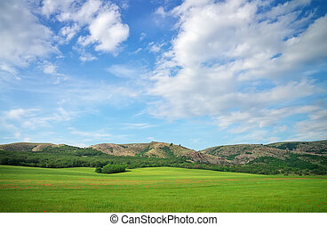 Green meadow in mountain and blue cloudy sky Composition of...