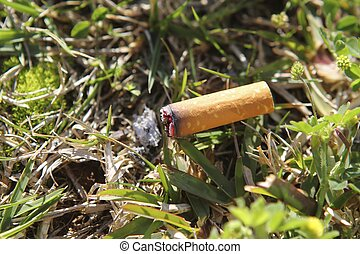 cigarette fire hazard on forest grass macro detail -...