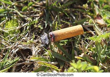 cigarette fire hazard on forest grass macro detail -...