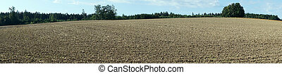 Plowed land on the field