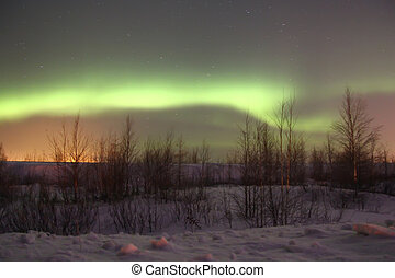 Northern lights in a night sky