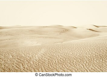 """dunes in the desert - landscape """"dunes in the desert"""""""