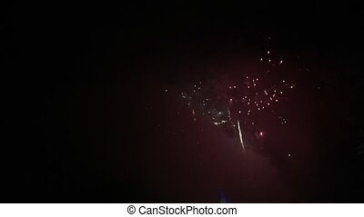 Fireworks in the Night Sky Near the Sea