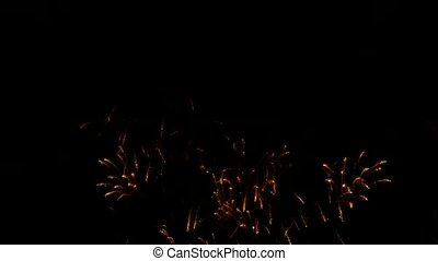 Golden Rain Fireworks Sparkling In Black Sky - Lots of night...