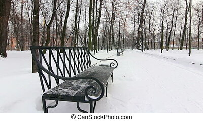 Seat in the alley in a winter park, St.Petersburg, Russia