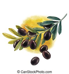 Watercolor black olive branch