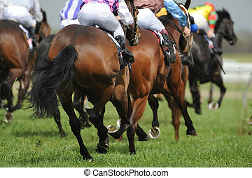 Horseracing - A field of horses and jockeys during a race.