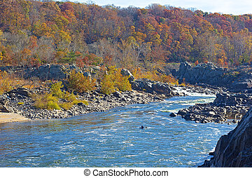 Potomac River flow in autumn - Fall forest landscape with...
