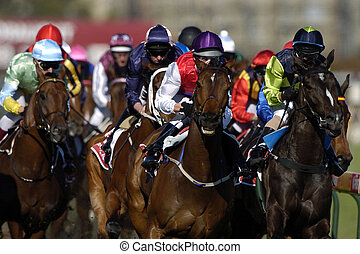Action of a bunch of race horses during a race head-on