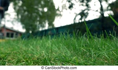 Green grass and man with lawnmower. 4K low angle view, slow...