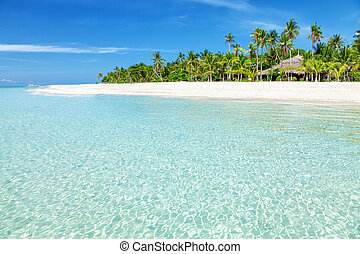 Fantastic turquoise beach with palm trees and white sand in...