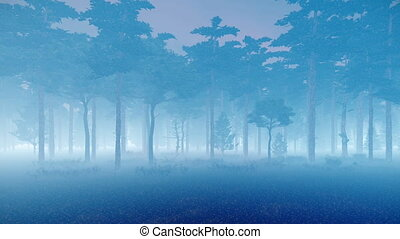 Misty pine forest at dusk - Mystical woodland scene with...