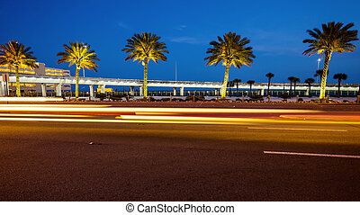 Biloxi, Mississippi Palm Trees and Traffic at Night - Palm...