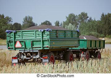 rapeseed - black small rapeseed on a trailer freshly...