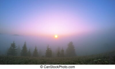 Sunrise in the Mountains. - Sunrise in the Summer Mountains....