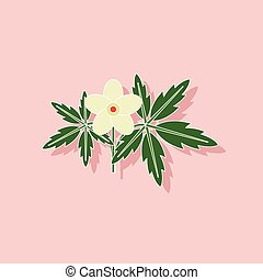 paper sticker on stylish background flower Anemone - paper...