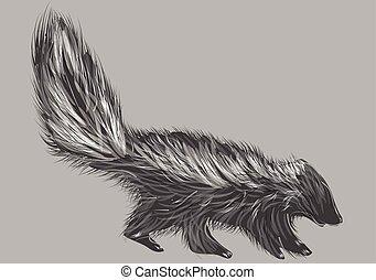skunk isolated on grey background. 10 EPS