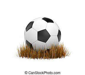 Ball on the withered grass. 3d illustration