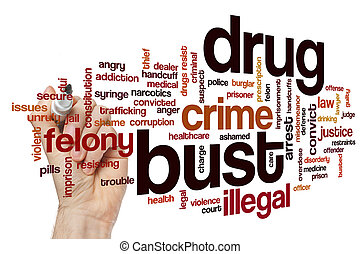 Drug bust word cloud concept