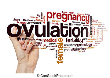 Ovulation word cloud concept