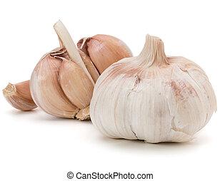 Garlic bulb isolated on white background cutout