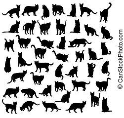Cat and Activity Silhouettes - Cat and Activity Pet Animal...