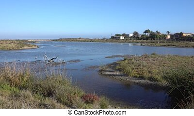 Sunny morning in the Malibu Lagoon State Beach, California.