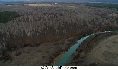 Forest landscape aerial shot - Landscape with leafless trees...