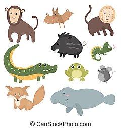 diferente,  vector, animales, Conjunto